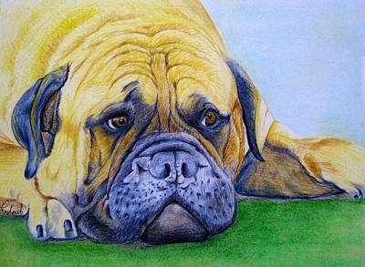 Painting - Bulldog by Prashant Shah
