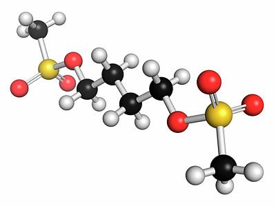 Chemotherapy Photograph - Busulfan Chemotherapy Drug Molecule by Molekuul