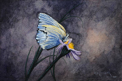 Butterfly Art Print by Bob Hallmark