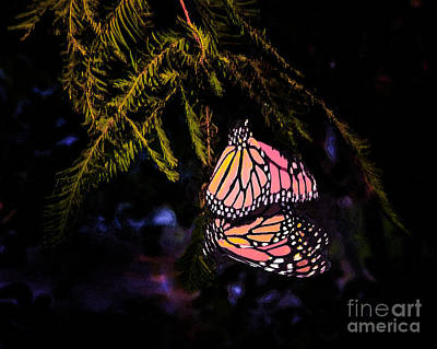 Monarch Butterfly Photograph - Butterfly Magic by Renee Barnes