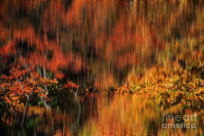 Photograph - By The Pond In Autumn by Jacqueline M Lewis
