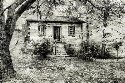 My Textures Photograph - Cabin In The Woods by Darren Fisher