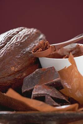 Cocoa Powder Photograph - Cacao Fruit, Cocoa Powder And Chocolate by Foodcollection
