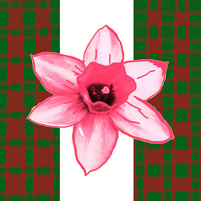 Cactus Flower By Navinjoshi And An Elegant Decorative Border Base To Focus The Flower Art Print