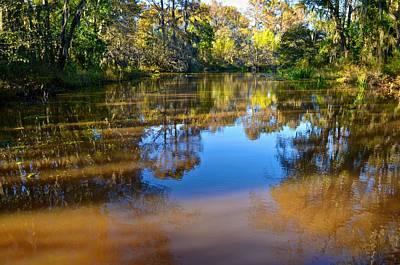 Photograph - Caddo Lake 10 by Ricardo J Ruiz de Porras