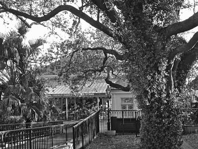 Photograph - Cafe Du Monde by Victoria Lakes