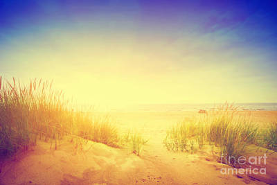 Autumn Landscape Photograph - Calm Ocean And Sunny Beach With Dunes And Green Grass by Michal Bednarek