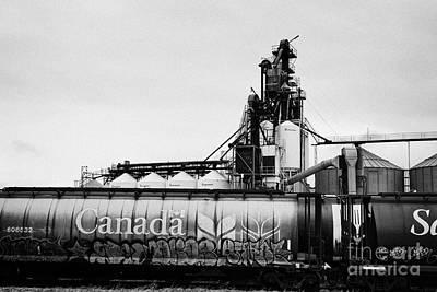 Canada Freight Grain Trucks On Canadian Pacific Railway Saskatchewan Canada Art Print by Joe Fox