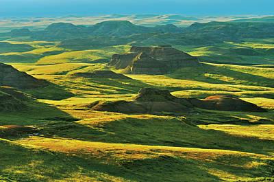 Killdeer Wall Art - Photograph - Canada, Saskatchewan, Grasslands by Jaynes Gallery