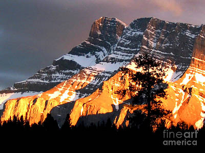 Photograph - Canadian Rockies by Nina Ficur Feenan