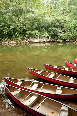 Canoeing The Macal River In Jungle Area Art Print