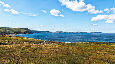 Photograph - Cape Spear by Perla Copernik