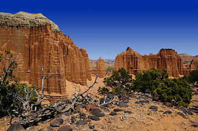 Photograph - Capital Reef by Don and Bonnie Fink