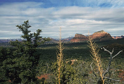 Photograph - Capitol Butte by Gary Wonning