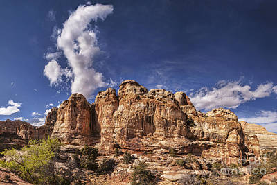 Photograph - Capitol Reef National Park Utah Usa by Colin and Linda McKie