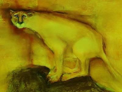 Cheetah Drawing - Captive by Jean Cormier