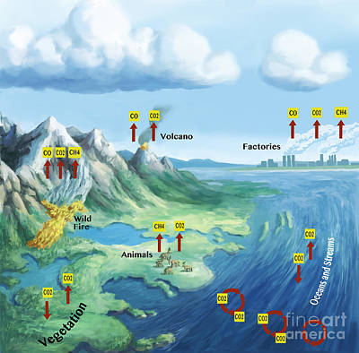 Info Graphic Photograph - Carbon Cycle by Spencer Sutton