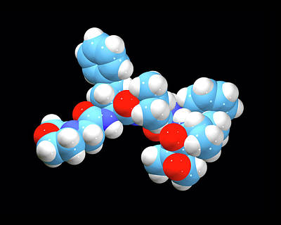 Pharmacology Photograph - Carfilzomib Cancer Drug Molecule by Dr Tim Evans