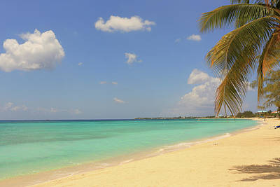 Trinidad And Tobago Wall Art - Photograph - Caribbean Dream Beach by Shunyufan