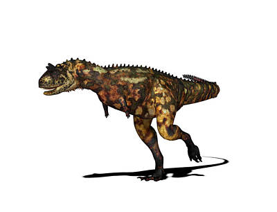 Paleozoology Photograph - Carnotaurus Dinosaur by Friedrich Saurer