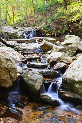 Photograph - Cascade Falls by Dana Sohr