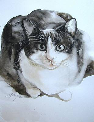 Cat In Black And White  Art Print by Alfred Ng