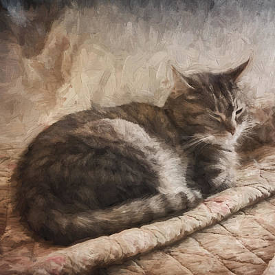 Pussycat Mixed Media - Cat On The Bed Painterly by Carol Leigh