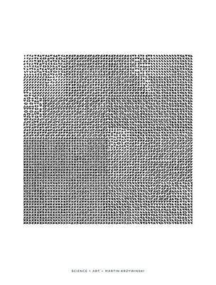 Digital Art - Catalogue Of 4096 Hilbertonians by Martin Krzywinski