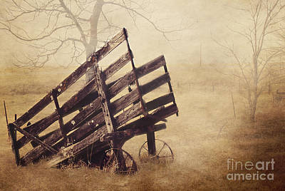 Cattle Chute Photograph - Cattle Chute by Pam  Holdsworth