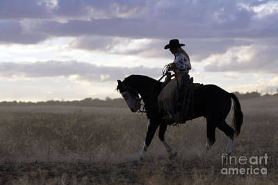 Working Cowboy Photograph - Cattleman With Paint Horse by M. Watson