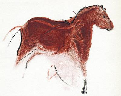 Photograph - Cave Painting Of Horse And Hind by Sheila Terry