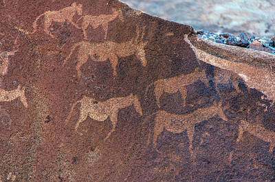Tribal Art Photograph - Cave Paintings By Bushmen, Damaraland by Panoramic Images