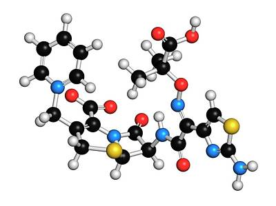 Ceftazidime Cephalosporin Antibiotic Drug Art Print by Molekuul