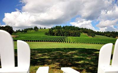 Jerry Sodorff Royalty-Free and Rights-Managed Images - Chairs In The Vineyard 19082 by Jerry Sodorff