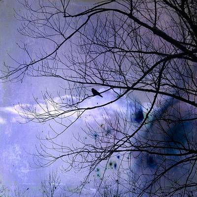 Blackbird Mixed Media - Changing Sky by Gothicrow Images