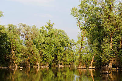 Channels And Lakes In The Danube Delta Art Print