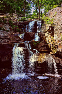 Photograph - Chapman Falls by Mike Martin