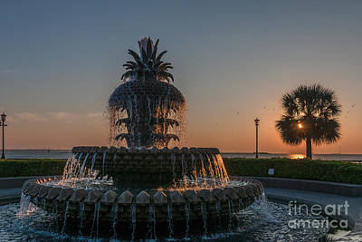 Photograph - Pineapple Fountain Charleston Sc Sunrise by Dale Powell