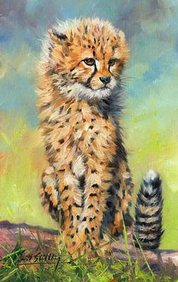 Cheetah Cub Art Print by David Stribbling