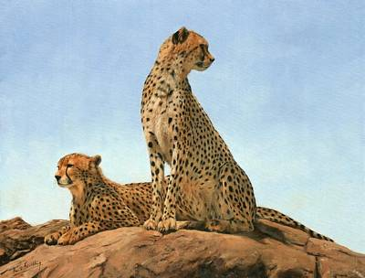Cheetah Painting - Cheetahs by David Stribbling