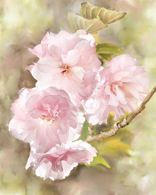 Digital Art - Cherry Blossoms by Francesa Miller