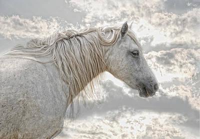 Provence Photograph - cheval de la Camargue by Joachim G Pinkawa