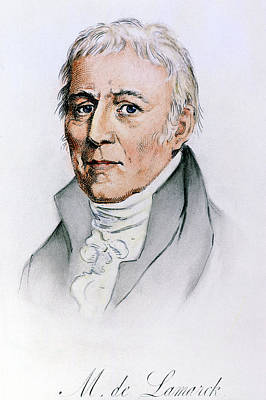 Chevalier De Lamarck (1744-1829) Art Print by Granger