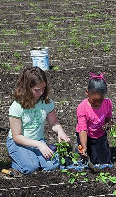 Spinach Photograph - Children At Work In A Community Garden by Jim West