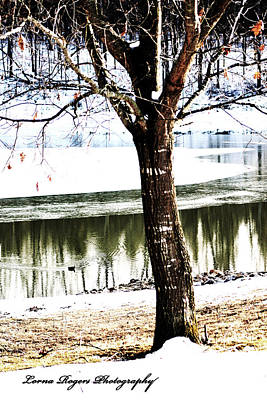 Photograph - Chill Of Winter With Signature by Lorna Rogers Photography