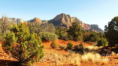 Photograph - Christmas In Sedona by Marilyn Smith