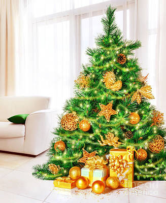 Photograph - Christmas Tree At Home by Anna Om