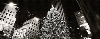Tree City Usa Photograph - Christmas Tree Lit Up At Night by Panoramic Images