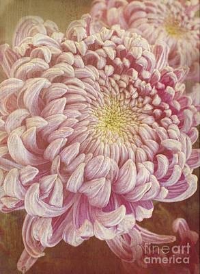 Photograph - Chrysanthemum by Elena Nosyreva