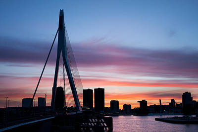 Maas Photograph - City Of Rotterdam Skyline Silhouette by Artur Bogacki